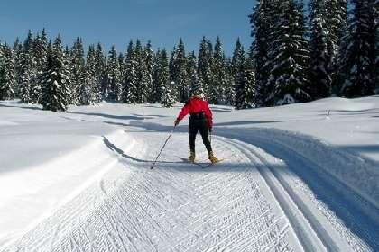 Plan des pistes de ski nordique