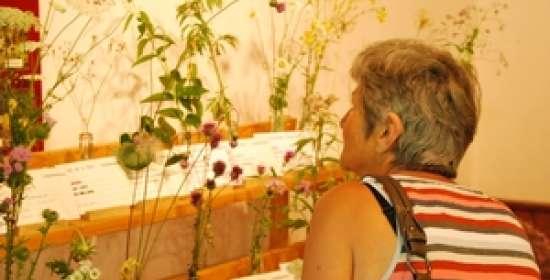 La Maison de la Flore